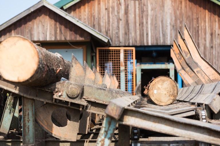 Evropska sredstva za spodbude podjetjem na področju rabe lesa