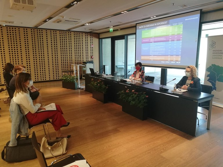 Državna sekretarka mag. Kirbiš Rojs o Načrtu za okrevanje in odpornost s člani Razvojnega sveta kohezijske regije Zahodna Slovenija
