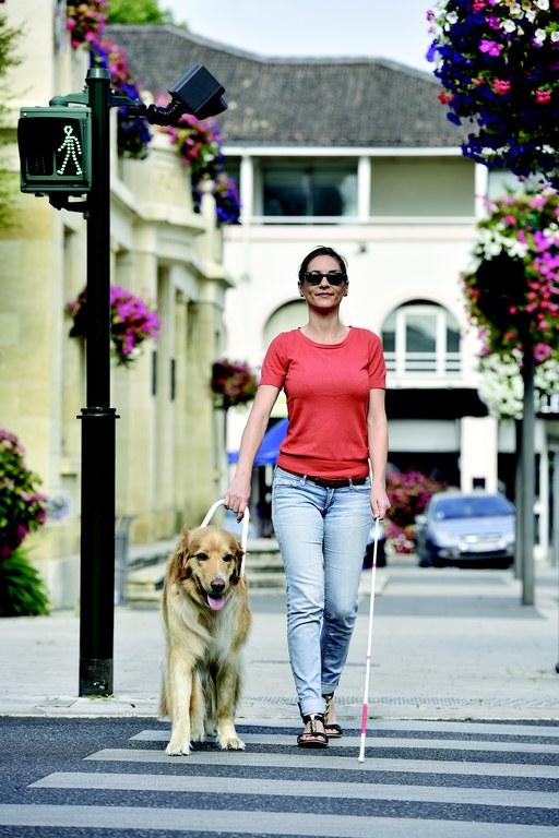 Evropska sredstva za celovito rehabilitacijo slepih in slabovidnih