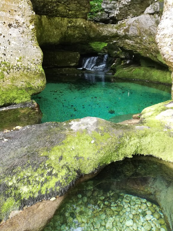 Evropska sredstva za izboljšanje stanja nekaterih vrst in habitatov v Triglavskem narodnem parku